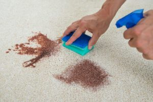 carpet cleaning red oak tx - stain removal
